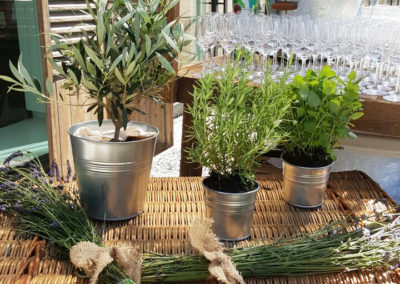 Provence_Theme_Decoration_Luxury_Aromatiques