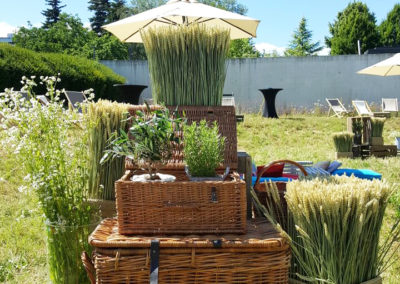 Provence_Theme_Decoration_Luxury_Paniers