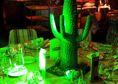 Western_Theme_Decoration_Luxury_Cactus