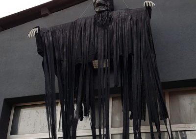 Halloween_Theme_Decoration_Luxury_Black_Monster