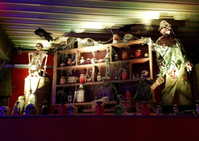 Halloween_Theme_Decoration_Luxury_Sorciere