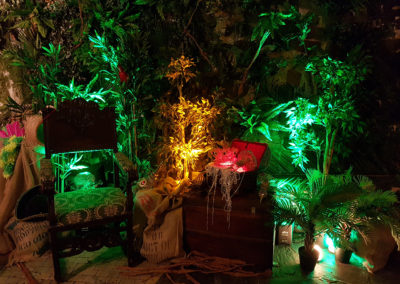 Jungle_Theme_Decoration_Luxury_Photocall