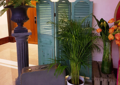 Cuba_Theme_Decoration_Luxury_Vegetation