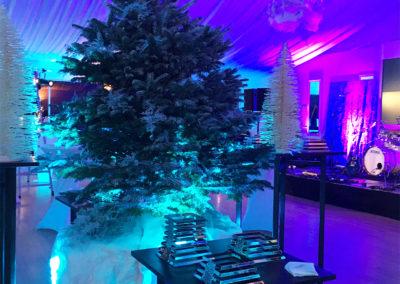 Event_Hiver_Decoration_Féérie