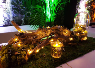 Event_Insecte_Decoration_Geneve